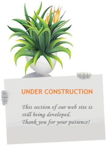 Agave-Head-With-Sign-Under-Construction