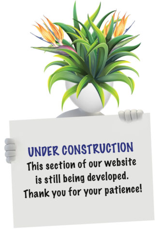 "Illustration of white figurine with sign that says: ""UNDER CONSTRUCTION, This section of our website is still being developed. Thank you for your patience!"